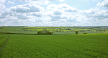 Land for Sale in Leicestershire